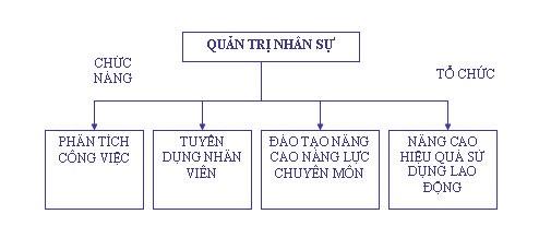 phần mềm HRM la gi-phan-mem-quan-tri-nhan-su