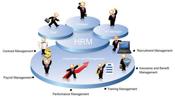 Vì sao nên sử dụng phần mềm quản lý nhân sự?